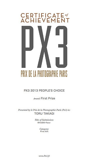px3_2013_1